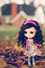 Fall Day - 320/365 ADAD 2011
