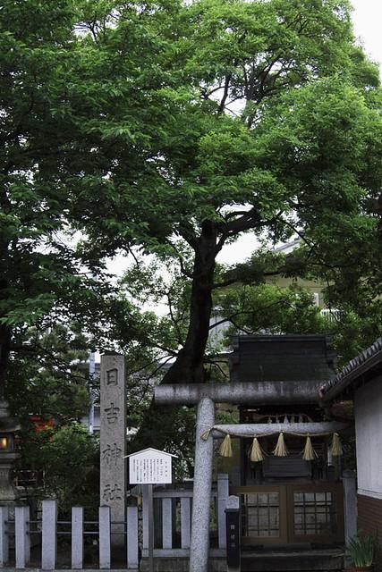 110522_054145_長浜朝散歩_日吉神社