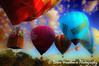 Colour Hits the Skies (Dawn Woodhouse) Tags: blue red sky colour photoshop day skies glory balloon sydney creative dream australia fantasy imagination brilliant wow1 aboveandbeyondlevel1