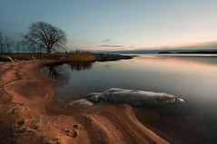 Calm beach (- David Olsson -) Tags: sunset tree beach reed nature reflections landscape sand nikon rocks sweden stones footprints sigma calm karlstad serene 1020mm lifebuoy 1020 tranquil lonelytree vrmland lakescape lateautumn skutberget d5000 davidolsson 2exposuremanualblend ginordicnov