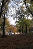 (tugcekancali) Tags: autumn tree fall turkey türkiye istanbul ağaç turkei emirgan sonbahar yaprak korusu eos500d canoneos500d eoskissx3 rebelt1i canonrebelt1i canonkissx3 eosrebelt1i