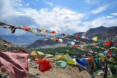prayer flag in Leh (vigzouzou) Tags: india nikon couleurs flag prayer vert 1750 himalaya tamron leh ladakh drapeau valle d90 prire boudhisme