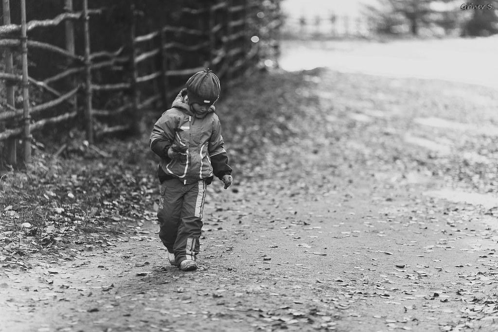 Вика малые карелы 1.10.2011-003