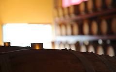 CASCINA ALTACOSTA (BCCB PHOTOS) Tags: italy italia alba winery piemonte cuneo piedmont barolo vini wines langhe cellars langa castiglionefalletto altacosta cascinabavacascinaaltacosta