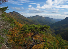 Linville Gorge - Hawksbill & Table Rock (Lonnie Crotts) Tags: