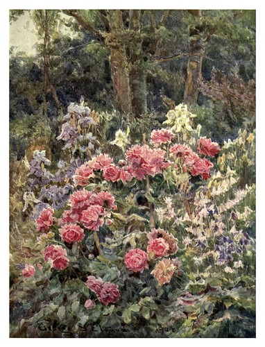006-Peonias y lirios-The garden that I love-1906-George S. Elgood