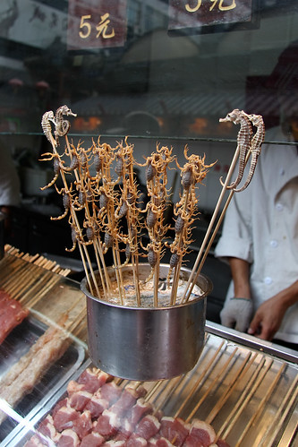 Sea Horses and Scorpions at Wangfujing Snack Street, Beijing, China