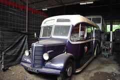 IMGP1429.JPG (Steve Guess) Tags: bus buses t surrey dorking gs rt boxhill rf albury rm abinger ranmoor westcot runningday steveguess
