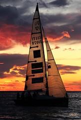 TRIESTE tramonto Dario Mersnich 006 (DARIO CLIKKER) Tags: sunset red race canon eos tramonto mare barche cielo trieste regata barcolana sailingboat 600d canoneos600d