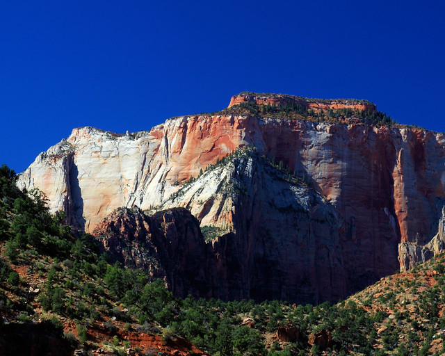 8x10 Zions National Park IMG_2328