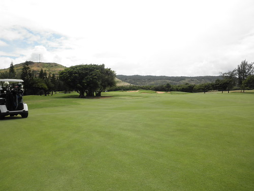 Turtle Bay Colf Course 231