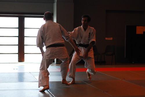 6299404713 457b4a3b82 London & Hove Shodokan Aikido Festival 2011