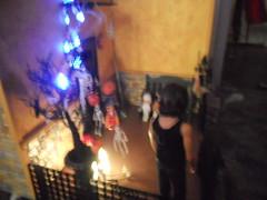 DSCN3999 (lainey2001) Tags: diorama barbiehouse 16scale