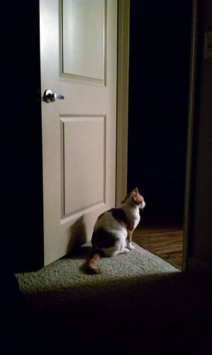 Hudon on guard