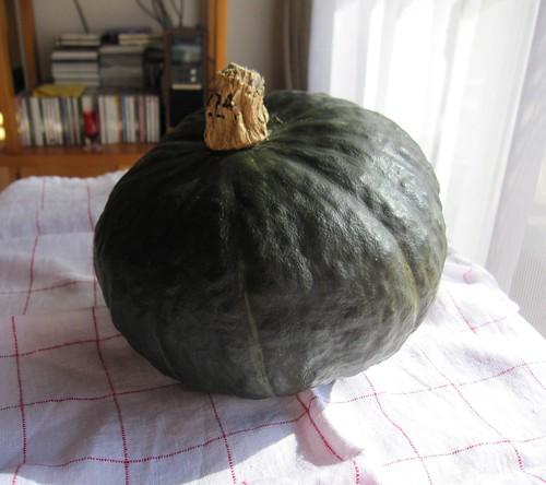 かぼちゃ by Poran111