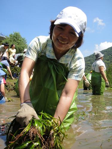 協會力行以行動守護棲地,2004年引進生態工作假期以來,已帶領眾多志工,親身接觸土地,為守護環境種下種子。