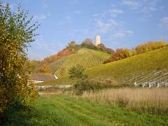 Burg Scharfenstein bei Kiedrich
