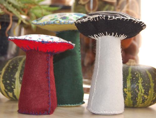 mushrooms / paddestoelen