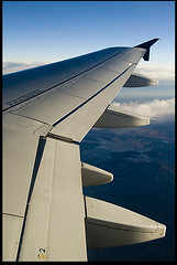 Ten-Word Tuesday — Fright Or Flight