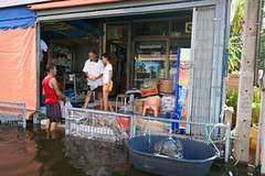 HOME_FLOOD_111109_0012