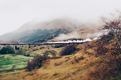 (pruginko) Tags: autumn train scotland highlands harrypotter glenfinnan jacobite hogwartsexpress