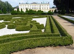Branicki Palace, Białystok (Adam Nowak) Tags: park de botanical arboretum sigmund bialystok branicki palacehetmanjohann deybelchâteau