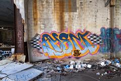 ayem ltk syw (ExcuseMySarcasm) Tags: streetart graffiti unitedstates michigan detroit packardplant ltk hiena marm guerrillaart ceno syw ayem excusemysarcasm