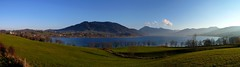 Lake Tegernsee (Claude@Munich) Tags: autostitch panorama lake mountains alps germany bayern bavaria oberbayern upperbavaria alpen tegernsee bayerische gmund hirschberg miesbach wallberg prealps voralpen claudemunich mangfallgebirge tegernseertal neureut