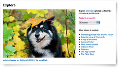 autumn leaves are falling ~ front page (sure2talk) Tags: explorefrontpage