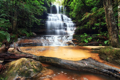 Junction Falls (Luke Tscharke) Tags: mountains tree wet water beautiful geotagged waterfall rainforest bluemountains nsw newsouthwales junctionfalls tapl madetoviewlarge geo:lat=33733896219844866 geo:lon=15043830991917957