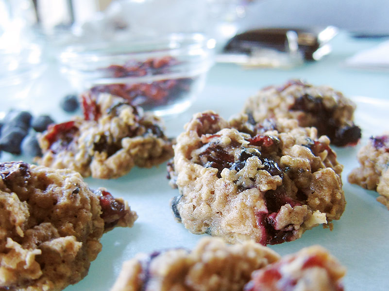 110929 Cranberry Oatmeal Cookies II