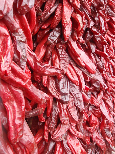 drying peppers (2)