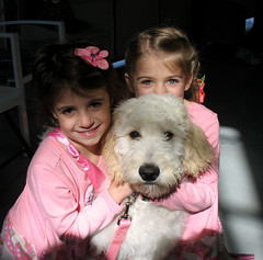 """Rosie with Chloe and Clare • <a style=""""font-size:0.8em;"""" href=""""http://www.flickr.com/photos/65918608@N08/6225186768/"""" target=""""_blank"""">View on Flickr</a>"""