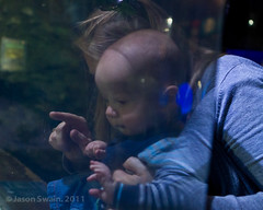 Holiday Snaps #12 (s0ulsurfing) Tags: baby aquarium cornwall child william 2011 s0ulsurfing