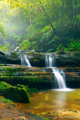 Waterfall :: Terrace Falls (-yury-) Tags: nature water waterfall rainforest australia bluemountains falls nsw hazelbrook terracefalls thepowerofnow