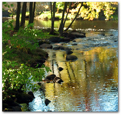 Golden Reflections (judwal) Tags: blue autumn trees sunlight green fall water colors lines yellow reflections river gold golden rocks colorful afternoon sunny winner sunlit left yellowblue pregame treetrunks blueyellow gamewinner pregamewinner