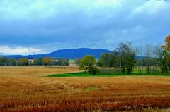 A View (*:.MaLcOlmLaNg.:*) Tags: autumn trees sky mountains colour clouds forest woodland landscape scotland nikon estate view aberdeenshire kenya farm vivid farmland hills nikkor fetternear 18200mm vr2 d7000
