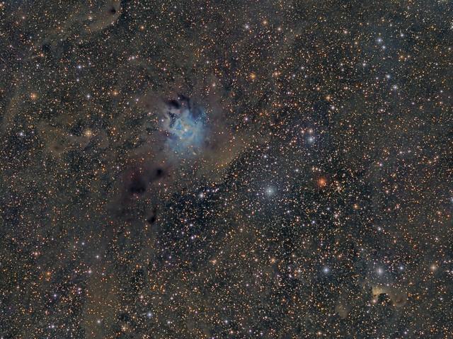 Nebulosa IRIS (NGC 7023) LRGB