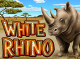 Online White Rhino Review