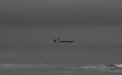 _MG_1634 (danieltreek) Tags: sun holiday holland beach nature water netherlands strand landscape see wasser sommer urlaub natur landschaft sonne nordsee niederlande northsee erholung
