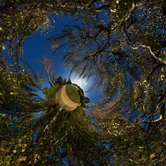 Getting closer ~ Explored (edwardhorsford) Tags: park autumn winter sky panorama brown leaves gardens season colours little ninja branches sheffield visit panoramic changing national planet hanging polar polarizer stitched weeping stereographic hugin lfm nodal upcoming:event=8467927