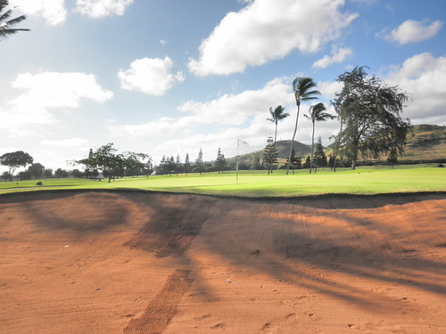 Turtle Bay Colf Course 085