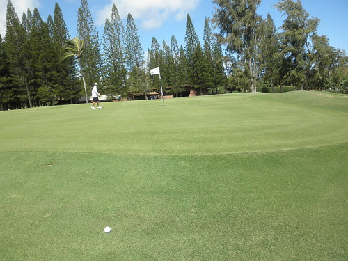 Turtle Bay Colf Course 168