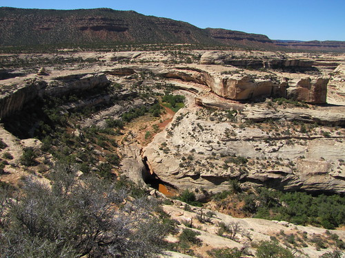 IMG_3301_At_Kachina_Bridge_at_Natural_Bridges_National_Monument