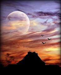 play with picnic (sillitilly) Tags: blue sunset red sky orange moon black nature birds silhouette clouds abigfave