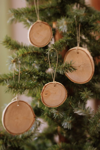 birch flats_on tree