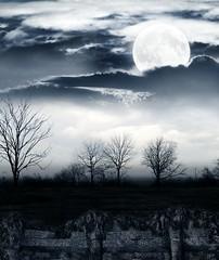 [フリー画像素材] グラフィック, フォトレタッチ, 空, 雲, 月, 夜空 ID:201111040400