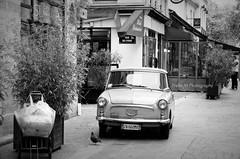 Un petit air de Dolce Vita à Paris (Xtelle_m) Tags: blackandwhite bw white black paris france car noir noiretblanc pigeon forum voiture nb blanc leshalles cygne dolcevita 1erarrondissement ruedescygnes xtelle xtellem flickrtravelaward