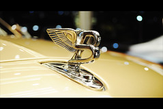 Bentley Logo (Sarath...) Tags: mall dubai ghost rollsroyce ferrari mercedesbenz bmw phantom audi maserati burj supercars r8 khaleefa