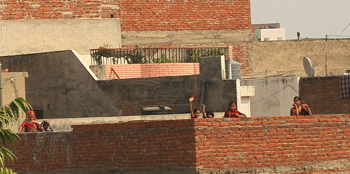 Roof people, Jaipur